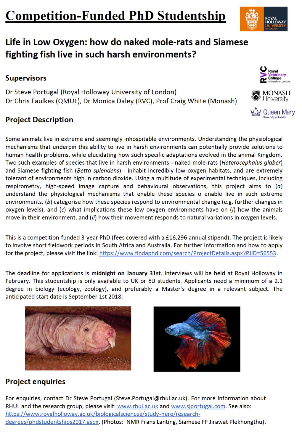 biology fieldwork report